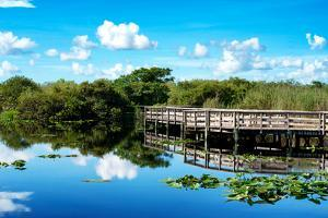 Pier Trail - Everglades National Park - Unesco World Heritage Site - Florida - USA by Philippe Hugonnard
