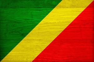 Republic of The Congo Flag Design with Wood Patterning - Flags of the World Series by Philippe Hugonnard
