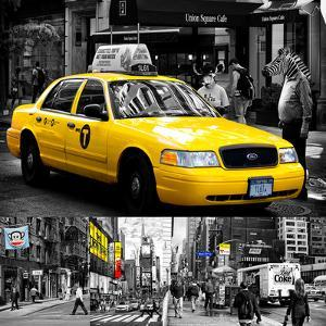 Safari CityPop Collection in New York by Philippe Hugonnard