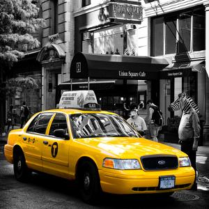 Safari CityPop Collection - NYC Union Square III by Philippe Hugonnard