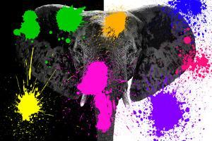 Safari Colors Pop Collection - Black & White Elephant by Philippe Hugonnard