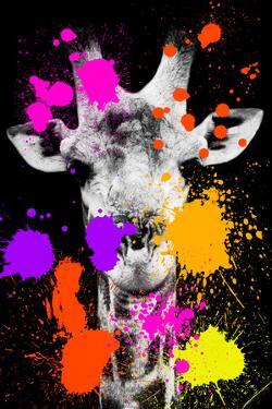 Safari Colors Pop Collection - Giraffe II by Philippe Hugonnard