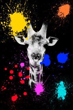 Safari Colors Pop Collection - Giraffe IV by Philippe Hugonnard