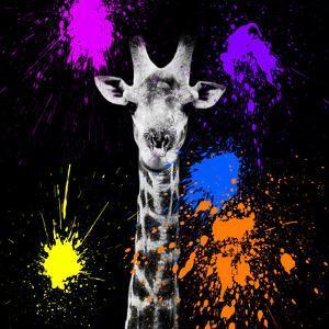 Safari Colors Pop Collection - Giraffe Portrait by Philippe Hugonnard