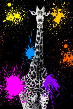Safari Colors Pop Collection - Giraffe VII by Philippe Hugonnard