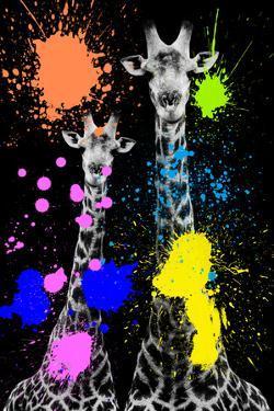 Safari Colors Pop Collection - Giraffes II by Philippe Hugonnard
