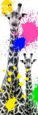 Safari Colors Pop Collection - Giraffes III by Philippe Hugonnard