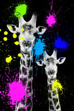 Safari Colors Pop Collection - Giraffes Portrait IV by Philippe Hugonnard