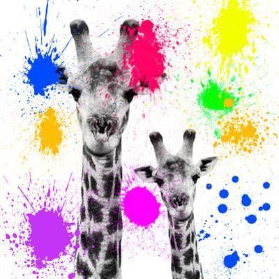 Safari Colors Pop Collection - Giraffes Portrait V by Philippe Hugonnard