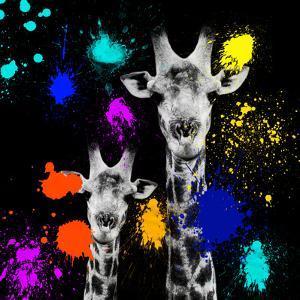 Safari Colors Pop Collection - Giraffes Portrait VI by Philippe Hugonnard