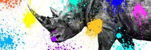 Safari Colors Pop Collection - Rhino Portrait V by Philippe Hugonnard