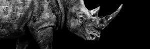Safari Profile Collection - Rhino Black Edition III by Philippe Hugonnard