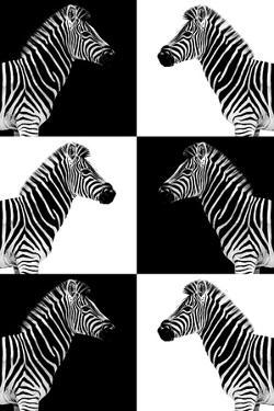 Safari Profile Collection - Zebras by Philippe Hugonnard