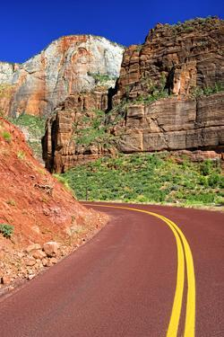 Scenic Drive - Zion National Park - Utah - United States by Philippe Hugonnard