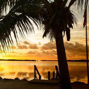 Silhouette at Sunset - Florida by Philippe Hugonnard