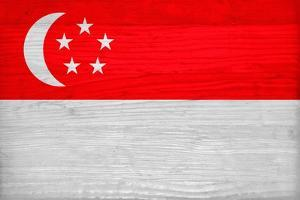 Singapore Flag Design with Wood Patterning - Flags of the World Series by Philippe Hugonnard