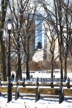 Snow in Central Park IV by Philippe Hugonnard