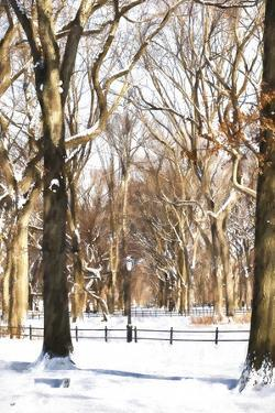 Snow in Central Park by Philippe Hugonnard