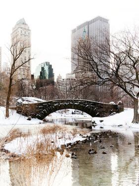 Snowy Gapstow Bridge of Central Park, Manhattan in New York City by Philippe Hugonnard