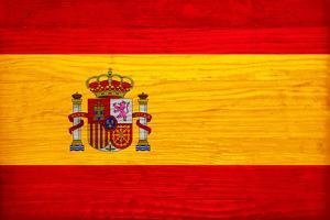 Spain Flag Design with Wood Patterning - Flags of the World Series by Philippe Hugonnard