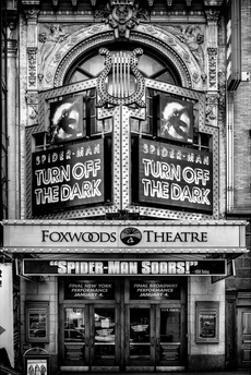 Spider-Man the Musical at Foxwoods Theatre - Broadway Theatre in Times Square - Manhattan by Philippe Hugonnard