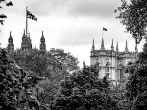 St James's Park with Flags Floating over the Rooftops of the Palace of Westminster - London by Philippe Hugonnard