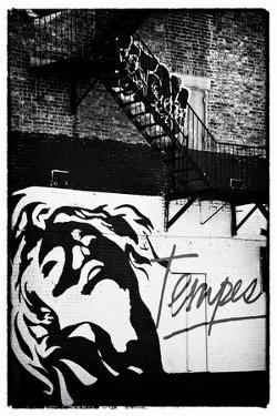 Street Art - Tempest - Manhattan - New York - United States by Philippe Hugonnard