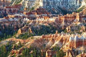 Sunrise Point - Utah - Bryce Canyon National Park - United States by Philippe Hugonnard