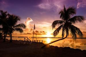 Sunset of Dreams - Florida - USA by Philippe Hugonnard