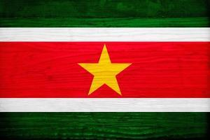 Suriname Flag Design with Wood Patterning - Flags of the World Series by Philippe Hugonnard