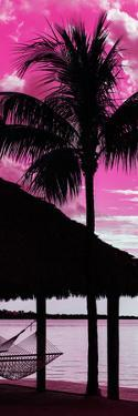 The Hammock and Palm Tree at Sunset - Beach Hut - Florida by Philippe Hugonnard