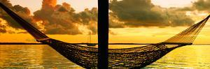 The Hammock at Sunset - Miami - Florida by Philippe Hugonnard
