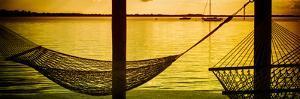 The Hammocks at Sunset - Florida by Philippe Hugonnard