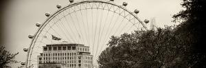 The Millennium Wheel View - UK Landscape - London - UK - England - United Kingdom - Europe by Philippe Hugonnard