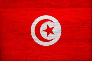Tunisia Flag Design with Wood Patterning - Flags of the World Series by Philippe Hugonnard