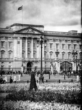 UK Landscape - Buckingham Palace - London - UK - England - United Kingdom - Europe by Philippe Hugonnard