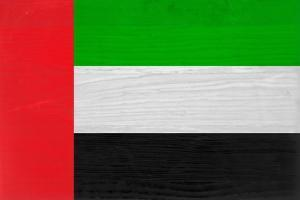 United Arab Emirates Flag Design with Wood Patterning - Flags of the World Series by Philippe Hugonnard