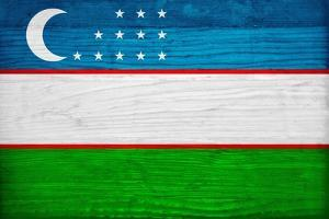 Uzbekistan Flag Design with Wood Patterning - Flags of the World Series by Philippe Hugonnard