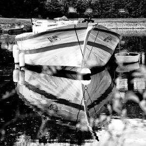 Vertoux - Loire-Atlantique - Pays de la Loire - France by Philippe Hugonnard
