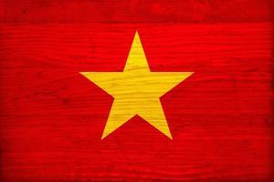 Vietnam Flag Design with Wood Patterning - Flags of the World Series by Philippe Hugonnard