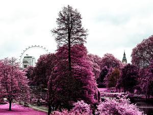 View of St James's Park Lake and Big Ben - London - UK - England - United Kingdom - Europe by Philippe Hugonnard