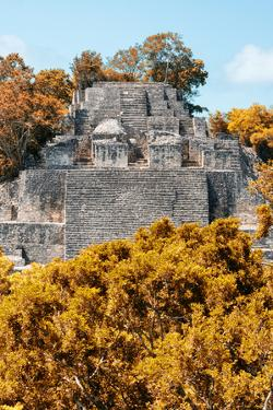 ¡Viva Mexico! Collection - Ancient Maya City within the jungle in Autumn of Calakmul II by Philippe Hugonnard