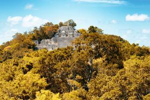 ¡Viva Mexico! Collection - Ancient Maya City within the jungle in Autumn of Calakmul III by Philippe Hugonnard