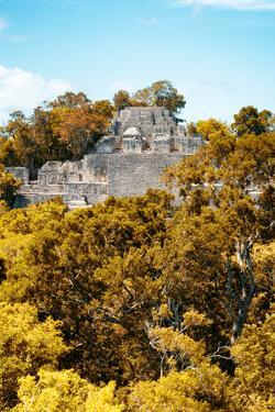 ¡Viva Mexico! Collection - Ancient Maya City within the jungle in Autumn of Calakmul IV by Philippe Hugonnard