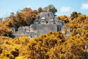 ¡Viva Mexico! Collection - Ancient Maya City within the jungle in Autumn of Calakmul by Philippe Hugonnard