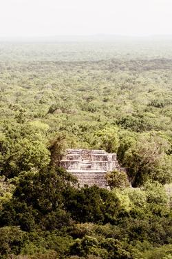 ?Viva Mexico! Collection - Ancient Maya City within the jungle VI - Calakmul by Philippe Hugonnard