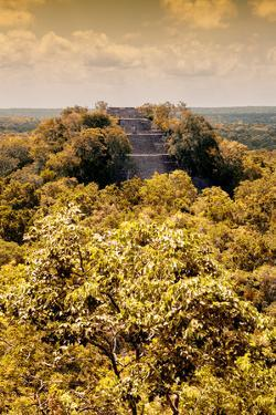 ¡Viva Mexico! Collection - Calakmul in the Mexican Jungle with Fall Colors III by Philippe Hugonnard