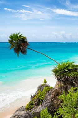 ?Viva Mexico! Collection - Caribbean Coastline in Tulum III by Philippe Hugonnard