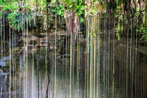 ¡Viva Mexico! Collection - Hanging Roots of Ik-Kil Cenote IV by Philippe Hugonnard