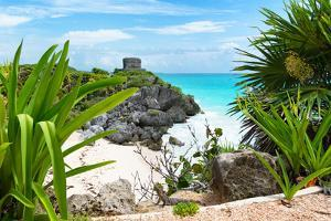¡Viva Mexico! Collection - Mayan Archaeological Site with Iguana - Tulum by Philippe Hugonnard